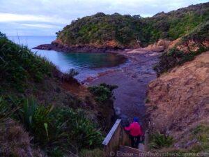 Tutukaka - Walk to the Lighthouse