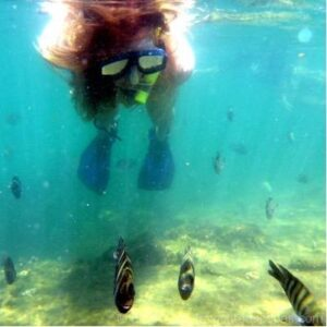 Snorkelling on Tangalooma Wrecks is one of the best things to do on Moreton Island
