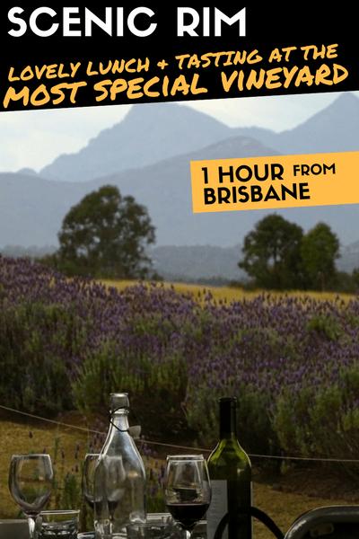 Scenic Rim Vineyard lavender Farm Brisbane