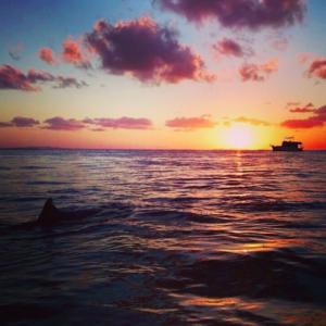 Things to do on Stradbroke Island - Sunset