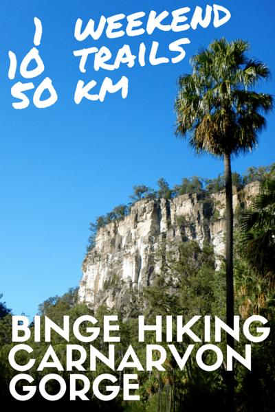 BINGE HIKING in Carnarvon Gorge