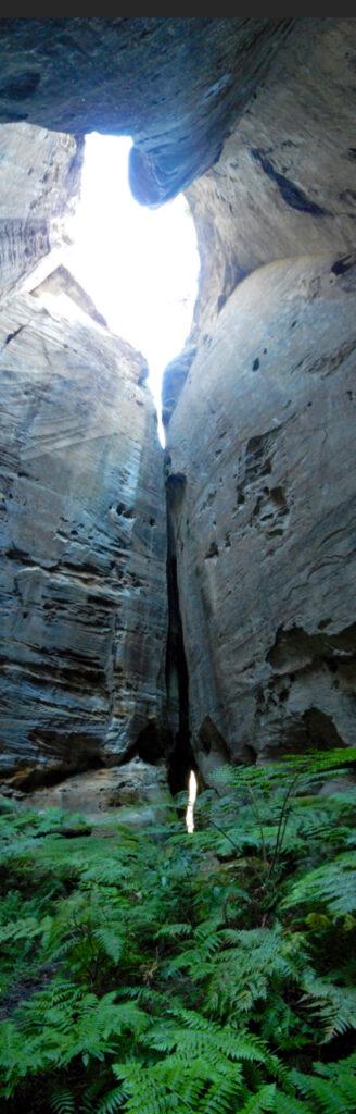 Carnarvon Gorge - amphitheatre panorama