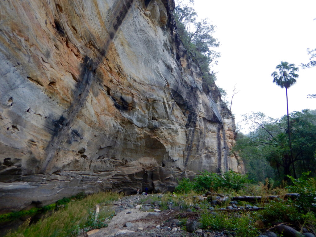 Carnarvon Gorge - big bend