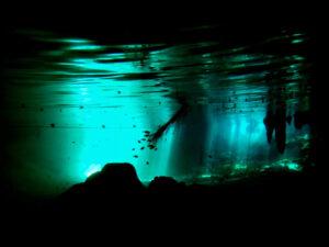 Gran Cenote Snorkeling in Tulum