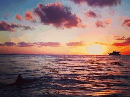 Best Brisbane Sunset Stradbroke Island