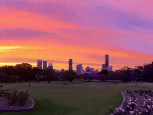 Best Brisbane Sunsets - New Farm Park