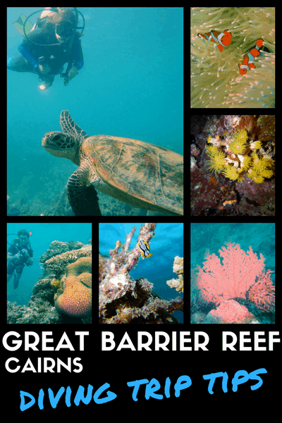 GREAT BARRIER REEF - tips to organise a diving trip