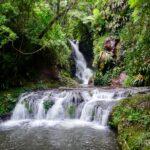 Lamington National Park - Box Forest Circuit - Elabana Falls 01
