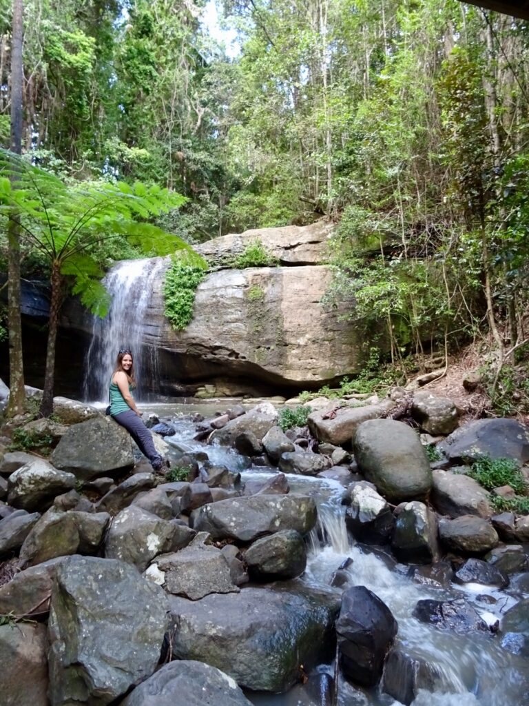 Serenity Falls (Buderim Waterfall) - Sunshine Coast