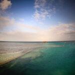 Heron Island Wreck - Great Barrier Reef