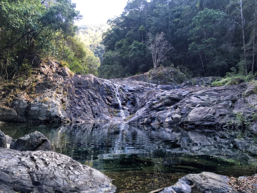 Booloumba Creek Falls Conondale National Park Walks