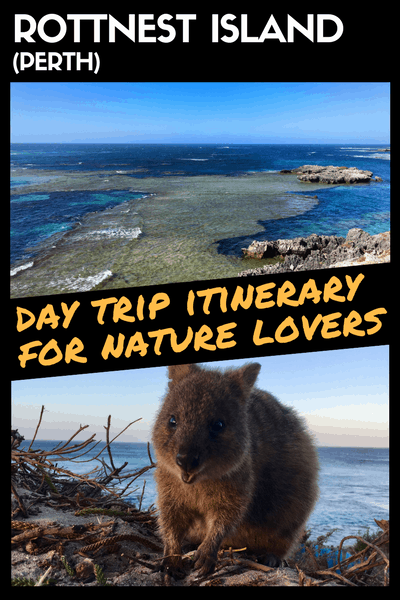 Rottnest Island Day Trip Itinerary For Nature Lovers