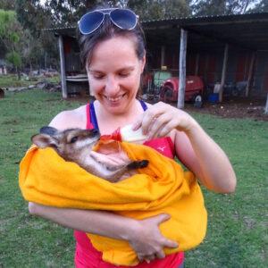 Australia Farm Baby Wallaby - eco holidays