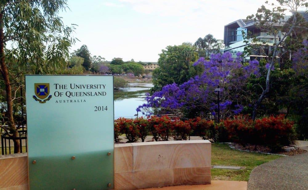 Brisbane - Jacarandas - UQ