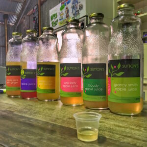 Garnit Belt - Apple Orchards - Apple Juice tasting