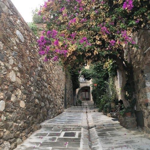 Grimaud Village Street with flowers