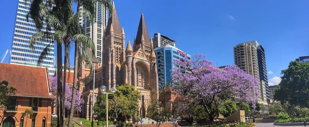Jacaranda trees in Brisbane City