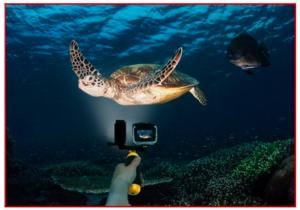 LED GoPro Light Underwater Photo