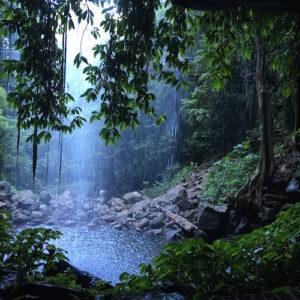 Crystal Falls - Waterfall Way - Dorrigo NP