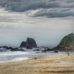 Narooma - Surf Beach