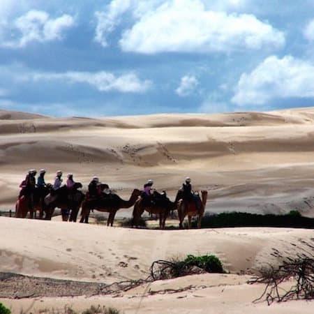 port stephens - anna bay dunes 02