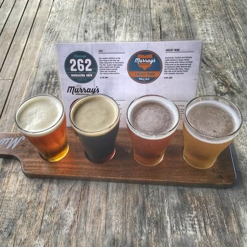 Murrays Brewery Beer Tasting Port Stephens
