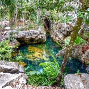 Best Cenotes for Snorkelling in Tulum (Mexico) - Garden of Eden Cenote sq