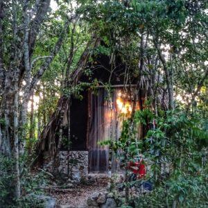 Yucatan Peninsula Itinerary - Hut in the Jungle