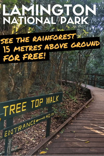 I prefer challenging hikes than boardwalks, but the Booyong walk led to the Lamington National Park Tree Top Walk that is full of surprises and a lot more adventurous than I expected! #Australia #Queensland #Brisbane #NationalPark #TreeLovers #RainForest