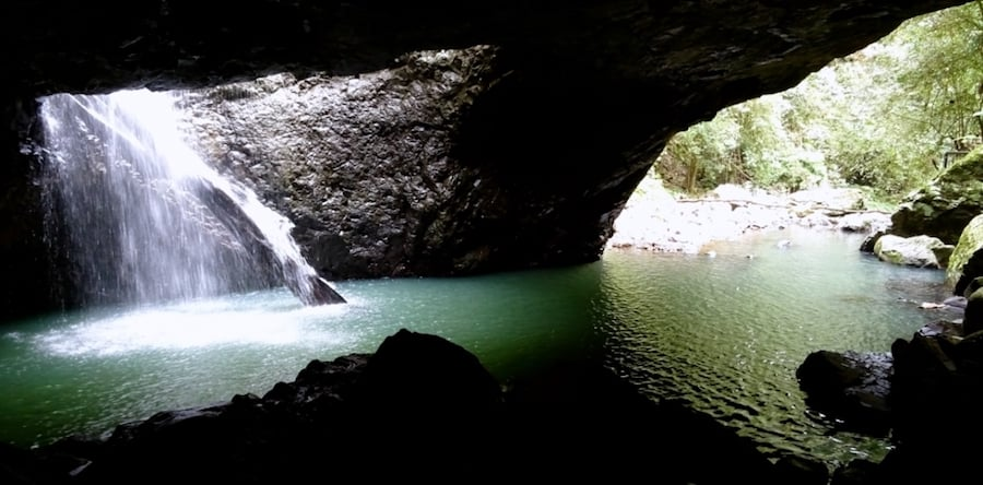 The Best Springbrook National Park Walks And Waterfalls