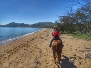 Things to do Magnetic Island - Horseshoe Bay horseriding