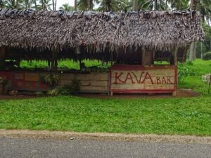 Top things to do in Vanuatu - Drink Kava