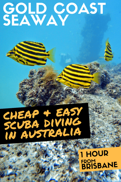 Cheap and easy scuba diving in Australia: Diving the Gold Coast Seaway