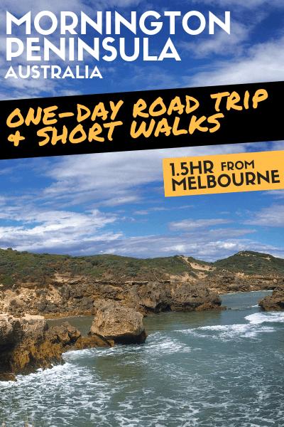 Mornington Peninsula Day Trip: A Nature Lovers' Road Trip Itinerary