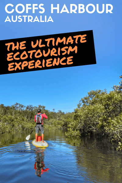 A Special Kayak Adventure In Coffs Harbour With The Gumbaynggirr People