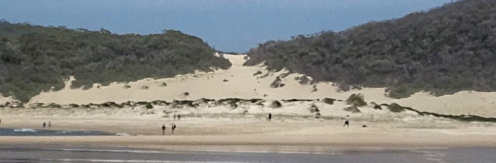 Sand dune to climb on Shark Island Port Stephens