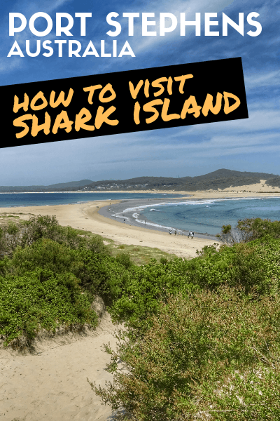 Shark Island, Port Stephens: Learn From Our Experience To Plan Your Visit